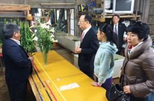 ユリ農家を訪ねる李氏(左から2番目)=7日、和泊町(町経済課提供)