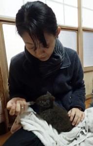 写真2枚(よことたて) 伊藤さんの介助で餌を食べるアマミノクロウサギ(伊藤圭子さん提供)