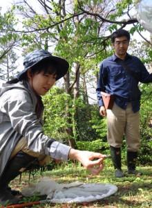 コノハチョウの生息環境などを調査した伊丹市昆虫館の職員=7日、和泊町の越山