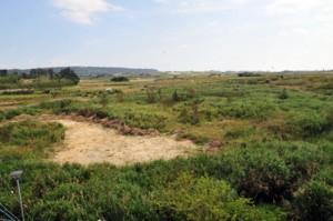 喜界町防災関連施設建設予定地写真 丸山