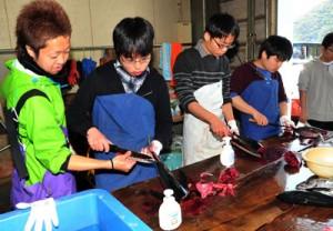 漁業体験コースで、カツオやキハダマグロをさばく修道高校の生徒=29日、奄美市名瀬