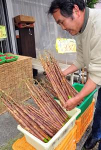 青果店の店頭に並ぶ「ダーナ」 =12日、奄美市名瀬
