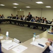 活発な意見が交わされた奄振審議会=24日、東京・霞が関の中央合同庁舎会議室