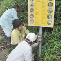 ノネコ対策で自動撮影カメラを設置する環境省のスタッフと関係者ら=25日、徳之島町