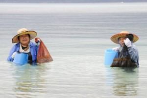 たくさんのモズクを採り、笑顔の女性と取れたモズク(下)=8日、瀬戸内町加計呂麻島