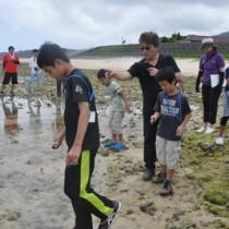 海の生き物を観察した参加者ら=15日、徳之島町母間海岸