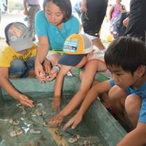子どもたちがサンゴの移植体験を行った「子ども博物学士講座」の第1回講座=28日、龍郷町龍郷の奄美漁協龍郷支所