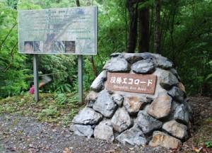 役勝川を気軽に楽しめるように整備された観光看板=26日、住用町役勝エコロード沿い