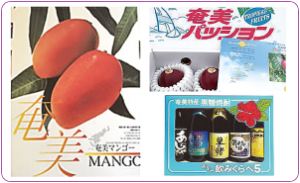 奄美市の返礼品として人気の高いマンゴー、パッションフルーツ、黒糖焼酎=いずれもふるさと納税サイト「ふるぽ」から)