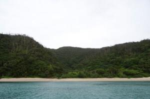 ロイヤル・カリビアン社による開発計画が浮上している龍郷町芦徳の西原半島