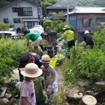 草取り作業に汗を流す参加者=24日、宇検村