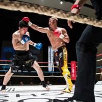 パンチで攻める南国超人(右)=上=。会場に詰めかけた応援団=13日、大阪市(提供写真)