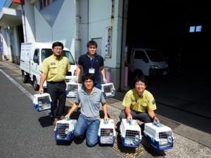 県本土の動物病院へノネコ7匹を送った関係者ら=13日、徳之島町の亀徳新港