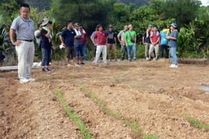 栽培技術の向上や交流を目的に大島地区農業青年クラブ連絡協議会が初開催した「ほ場巡回ツアー」=28日、奄美市名瀬小湊のほ場