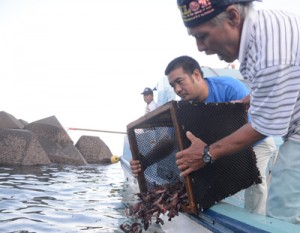スジアラを放流する名瀬地区漁業集落のメンバー=27日、奄美市の名瀬近海