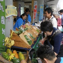 奄美産の葉物野菜などを買い求める都民ら=21日、東京・有楽町
