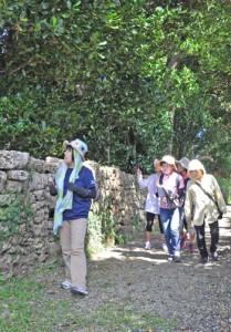 「奄美世界自然遺産トレイル」のコース候補地を確認する参加者ら=1日、伊仙町