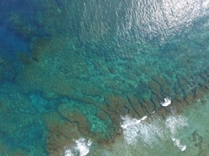 UAVを用いて撮影したサンゴ礁地形=8月28日、大和村大棚漁港の沖合(撮影・長谷川均・国士舘大学教授)とマルチビーム測深中の船室=8月28日、同村大棚沖