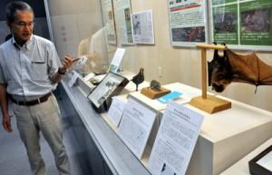 奄美と沖縄の生物について解説する琉大博物館の佐々木健志学芸員=15日、瀬戸内町
