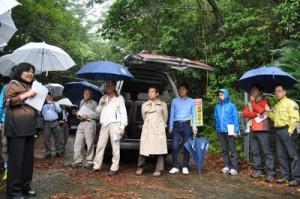 徳之島で現地視察を行った世界自然遺産候補地科学委員会の奄美作業部会=5日、徳之島町