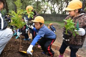 宇宿小学校の子どもたちが海の環境保全につながる森の大切さなどを学んだ植樹祭=10日、奄美市笠利町の大瀬公園