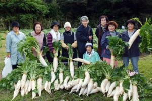アッタドコネを収穫した女性グループ=24日、奄美市名瀬有良