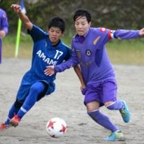 19チームで開幕した南海日日旗争奪奄美大島サッカー選手権大会=25日、旧大島工業高校グラウンド