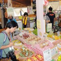うけん市場を見学するモニターツアー参加者ら=4日、宇検村