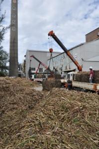 操業開始した工場に続々と運び込まれるサトウキビ=7日、与論島製糖与論事業所