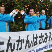 タンカンにはさみを入れて収穫シーズンの到来を喜ぶ関係者ら=26日、徳之島町母間
