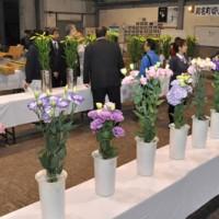 花き生産者から56点が出品された切り花品評会=23日、知名町