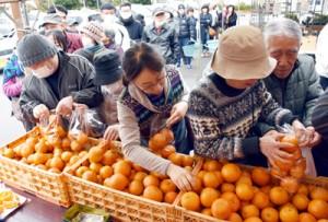 タンカンを袋詰めする買い物客らでにぎわった直売会=4日、鹿児島市のおいどん市場与次郎館