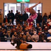 レスラーーたちが迫力満点の飛び技や白熱した攻防を繰り広げた九州プロレスの奄美興行=12日、大和村体育館