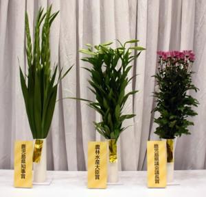 上位3点を占めた沖永良部の切り花=2日、鹿児島市のかごしま県民交流センター
