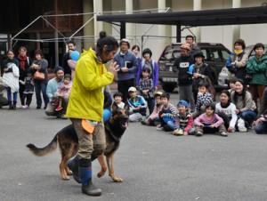 公開されたマングース探索犬の訓練=12日、大和村