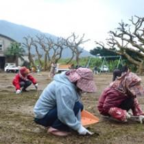 雨の中、準備作業に精を出す住民ら=19日、池地小中学校