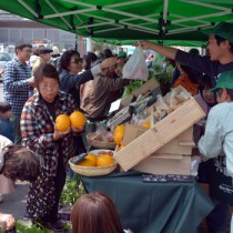 多くの買い物客が訪れた直売イベント「はる市」=2日、瀬戸内町古仁屋