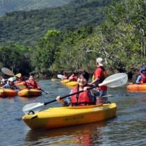 マングローブなど自然を満喫するカヌーツアー客=29日、奄美市住用町