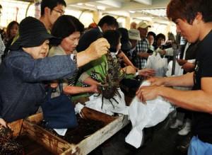 イセエビなど海産物を求めて大勢の買い物客が訪れた「新鮮なお魚まつり」=23日、奄美市名瀬の名瀬漁協