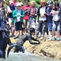 大勢の見物者でにぎわった伝統の追い込み漁「マハダグムイ」=30日、和泊町