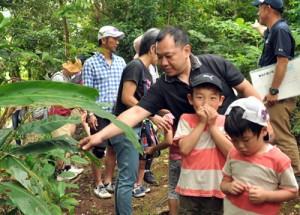 自然観察体験で施設周辺の植物に理解を深める参加者=5日、県立奄美少年自然の家