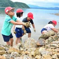 伝統の「垣起こし」を体験する薩川小の児童たち=30日、瀬戸内町加計呂麻島の木慈集落