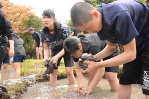 泥染め体験をする住用中の生徒=2日、本場奄美大島紬泥染公園