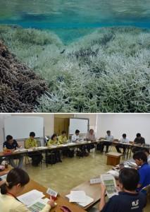 大規模な白化が確認された樹枝状のミドリイシ属の群体。礁池内の8割が死滅した=2016年4月、徳之島町の畦海岸(池村茂さん撮影)と2017年度の事業計画などを承認した奄美群島サンゴ礁保全対策協議会の総会=1日、奄美市役所