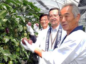 収穫式で鮮やかに色づいた果実を手に笑顔を見せる宮原会長(右)ら関係者=5日、瀬戸内町篠川