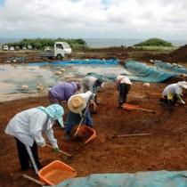 城久遺跡群の大ウフ遺跡発掘作業=2009年10月、喜界町山田