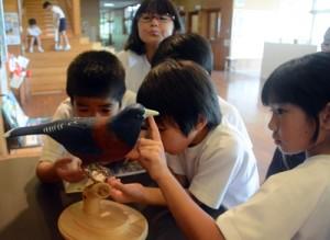 畠野さんが制作したルリカケスの彫刻に興味津々の児童=29日、田検小学校
