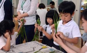 ガヤマキ作りに挑戦する児童ら=10日、大和村の名音小