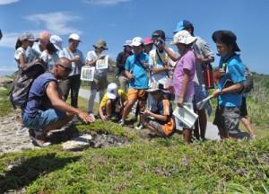 渡嘉敷島に自生する植物の特徴を学ぶこども環境調査隊=28日、慶良間諸島