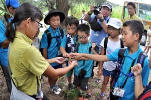 特定外来生物のわなが仕掛けられた現場を視察するこども環境調査隊の隊員ら=25日、沖縄県慶良間諸島の座間味島